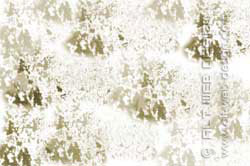 GRUNGE BRUSH (Pinsel) photoshop tutorial - Resultat